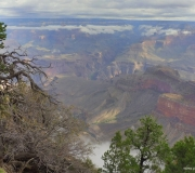 Grand Canyon-NP-17