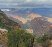 Grand Canyon-NP-43