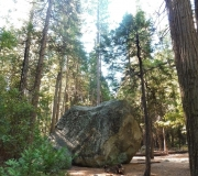 Yosemite-9