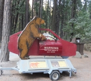Yosemite-43
