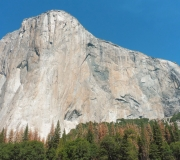 Yosemite-63