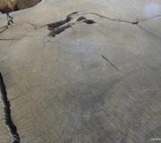 Sequoia-32