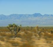 Nevada-1