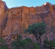 zion-national-park-45