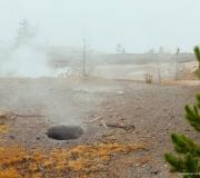 Yellowstone-30