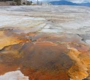 Yellowstone-66