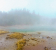 Yellowstone-38
