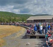 Yellowstone-143