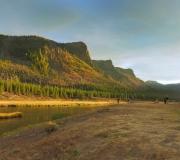 Yellowstone-192