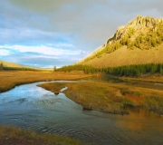 Yellowstone-193