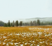 Yellowstone-29