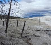 Yellowstone-74
