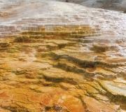 Yellowstone-76