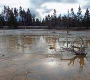 Yellowstone-95